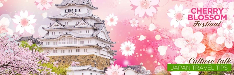 Cherry Blossom Festival Culture Talk - Japan Travel Tips